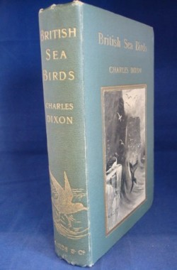 British-Sea-Birds-by-Charles-Dixon-B00HCW2MLE